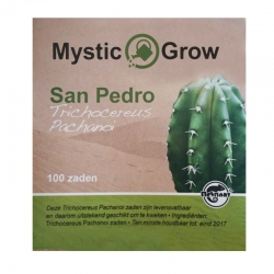 Cacti seeds San Pedro Trichocereus Pachanoi seeds - 100 seeds   12,00 Next Level Smartshop Webshop