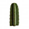 Mescaline Cacti San Pedro (Echinopsis Pachanoi) - from 25 cm   23,50 Next Level Smartshop Webshop