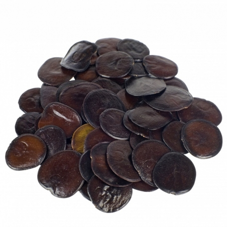 Seeds Yopo - 20 Seeds € 6,95