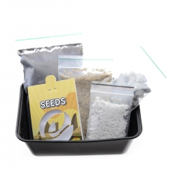 San Pedro Grow Kit