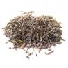Herbs & Seeds Lavender x-grams € 6,50 Next Level Smartshop Webshop