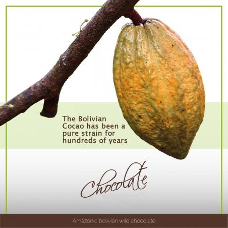 Raw Cacao 100% Raw Cacao Pasta - Bolivia 450 / 1000g   49,95 | Next Level Smartshop Webshop