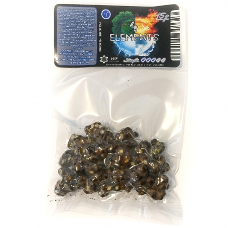 Magic Truffles Psilocybe 4 Elements Magic Truffles   12,00 Next Level Smartshop Webshop