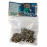Magische Truffels Psilocybe Pacha Mama Magic Truffels    12,50 | Next Level Smartshop Webshop