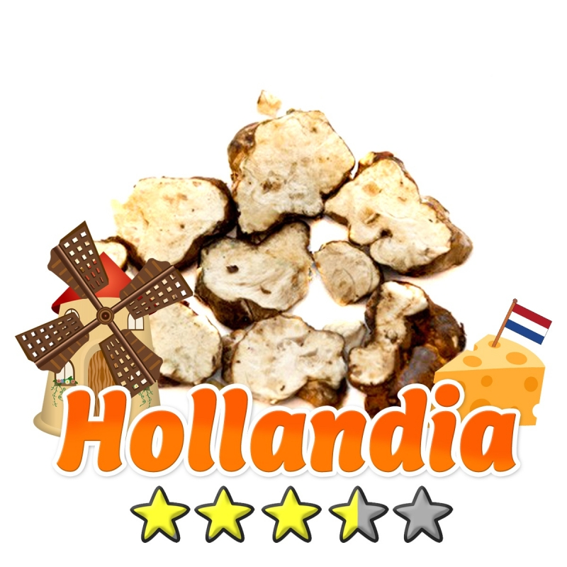 Magic Truffles Budget Truffles | Psilocybe Hollandia   12,95 Next Level Smartshop Webshop