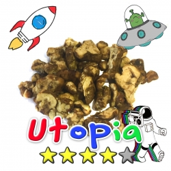 Magic Truffles Budget Truffles | Psilocybe Utopia    12,50 Next Level Smartshop Webshop