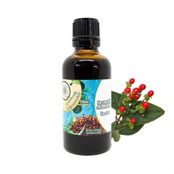Tincuren & Extracten Sarsaparilla Tinctuur - 50ml   11,95 | Next Level Smartshop Webshop