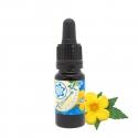 Herbs & Seeds Damiana Extract 10ml   9,60 Next Level Smartshop Webshop