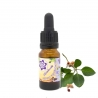 Ashwagandha Extract - 10ml