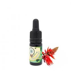 Mulungu  Mulungu Extract - 5ml en 10ml  € 15,50 | Next Level Smartshop Webshop