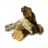 Ethnobotanicals Caapi Altar Piece  € 79,50 Next Level Smartshop Webshop