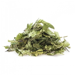 Chacruna Psychotria Viridis - Chacruna - Leaves vanaf € 18,50 Next Level Smartshop Webshop