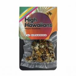 Magic Truffles Magic Truffles High Hawaiians - 22 g   € 19,95 Next Level Smartshop Webshop