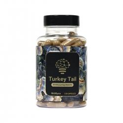 Turkey Tail Mushroom Powder 120 caps |  €34,95 | Next Level Smartshop Webshop