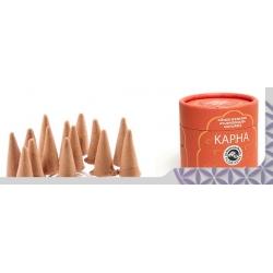 Wierook Cones